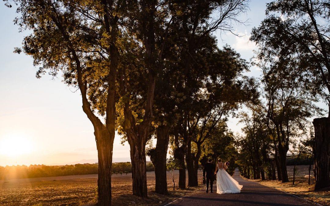 Fotografías de boda en la Vega del Henares